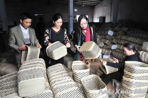 One day experience in Kim Son sedge weaving village